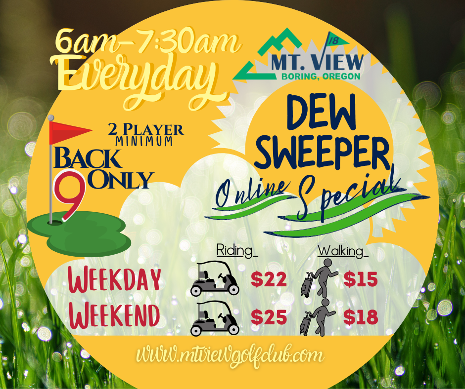 Dew Sweeper Online Special
